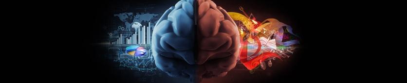 ورشة عمل الذكاء العاطفي  دورات تدريبية في دبي