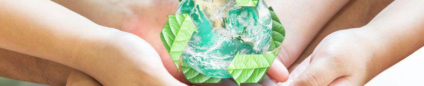 ورشة عمل في الصحة والسلامة والبيئة  دورات تدريبية في