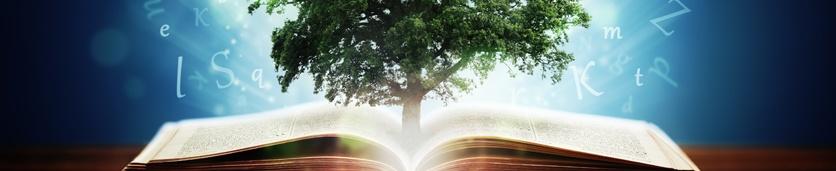 التعليم والتطوير: الأدوات والاستراتيجيات  دورات تدريبية في دبي