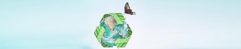 إدارة النفايات: المنهجية الحديثة والمستدامة  دورات تدريبية في دبي