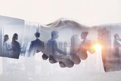 مقدّمة في الشراكات بين القطاعين العام والخاص - التعلّم الافتراضي