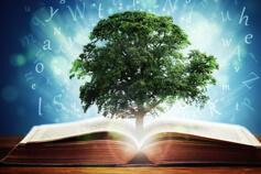 التعليم والتطوير: الأدوات والاستراتيجيات