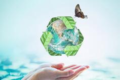 إدارة النفايات: المنهجية الحديثة والمستدامة